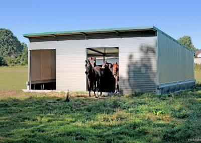 Mobilstall Regio: Pferdestall mit Tieren auf einer Weide.
