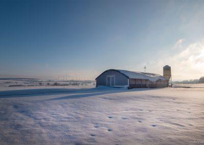 Mobilstall Rundbogen: Vollisolation für zuverlässigen Schutz vor Kälte im Winter.