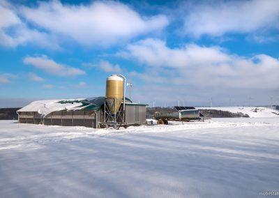 Mobilstall Rundbogen: Kein Problem mit Schneelast. Unsere Stallsysteme trotzen auch dem Winter.