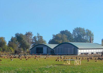 Mobilstall Rundbogen: Beispiel mit Wintergarten. Die Tiere haben viel Platz.